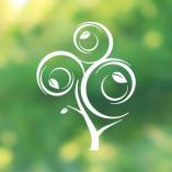 tree-blur